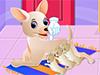 Baby Chloe Puppy Care